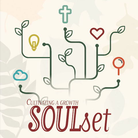 Cultivating a Growth Soul Set